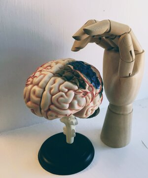 artificial hand and brain